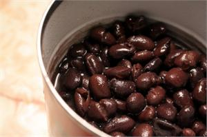 black bean tortilla