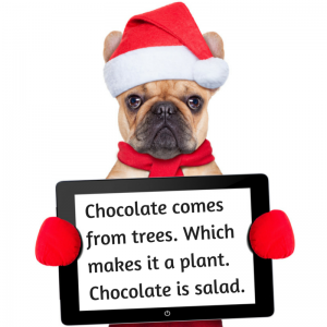 dog-chocolate-quote
