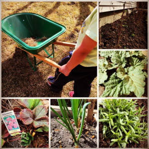 Healthy Spring Planning