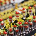 Nutrition Tips for Corporate Event Planners by Andrea Holwegner RD