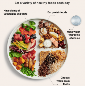 The New Food Guide: Calgary Dietitian Andrea Holwegner Reviews