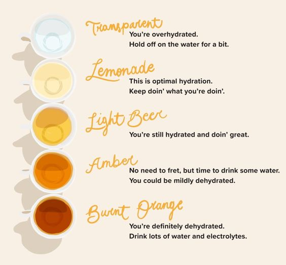 a chart demonstrating pee colors and how they determine your hydration level