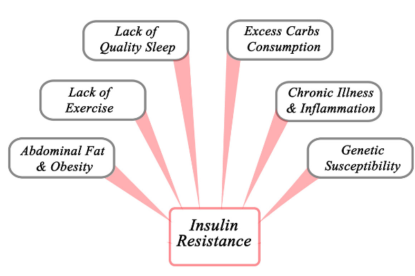 an infogrphic for insulin resistance and symptoms